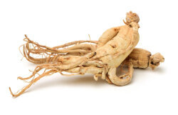 Extracto de ginseng root